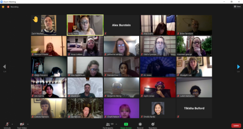 A screenshot from the Feb. 18 LSC meeting. More than thirty students spoke during Public Participation.