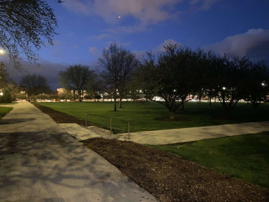 The lawn at night.